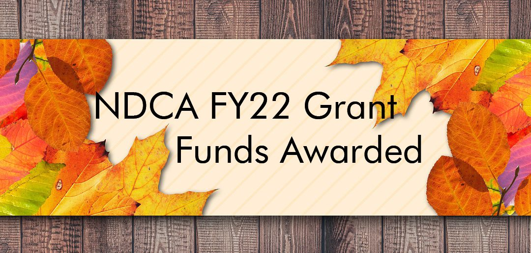 The Human Family Receives Arts Grant from NDCA